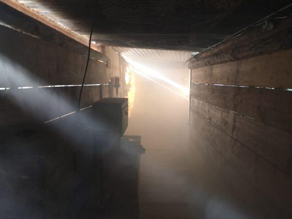 tunnel en bois, fumée épaisse et rayons de soleil